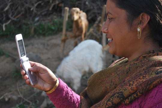 A newly-trained member of Radar's Indian network of citizen journalists sends a report from her village farm in the rural Himalayan foothills